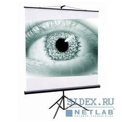 Экран на штативе ScreenMedia 150x150 см (Apollo-Т STM-1101)